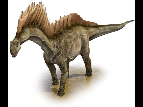 amargasaurus- -enciclopedia-sobre-dinosaurios