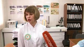 Специалисты Россельхознадзора проверили 50 торговых точек, где продают семена