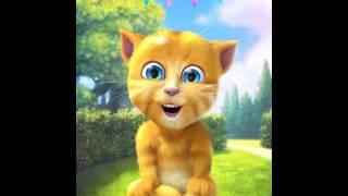 Bila Umurku Bertambah (Ulang Tahun versi Muslim) versi Kucing Imut - Lagu Anak Indonesia