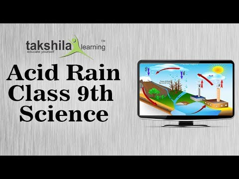 CBSE Class 9 Science Online Classes| Acid rain | CBSE Syllabus | ICSE |  NCERT Solution