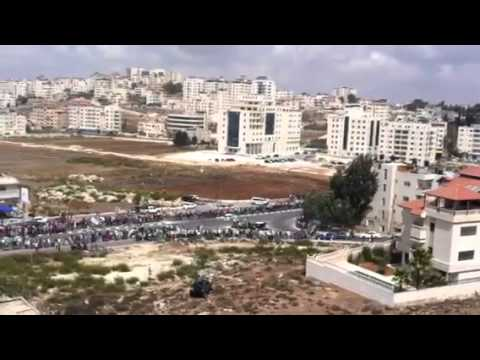 Amazing car rally show off in Palestine
