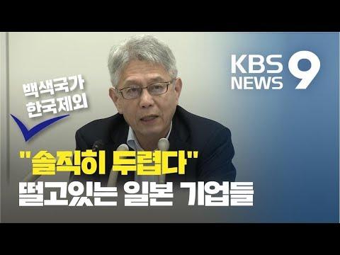"""일본 기업 에서 곡소리 나는 이유...""""흑연 10년새 80% 대체…한국시장 잃을 것""""/ KBS뉴스(News)"""