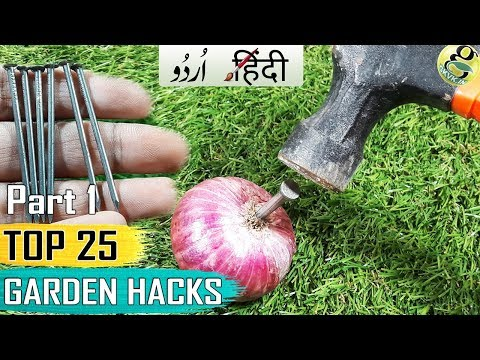 GARDENING TIPS AND HACKS: TOP 25 Garden Shortcuts and Ideas Compilation – Part 1 - Hindi Urdu