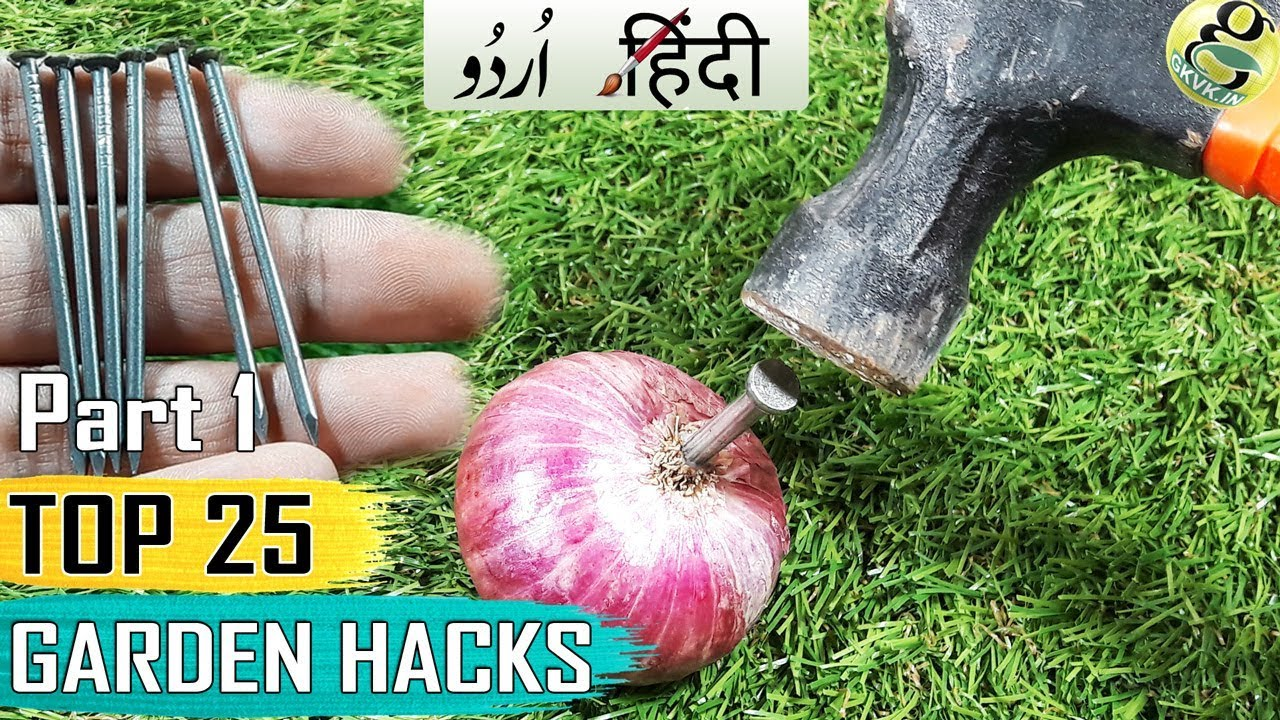 GARDENING TIPS AND HACKS: TOP 25 Garden Shortcuts and Ideas ...
