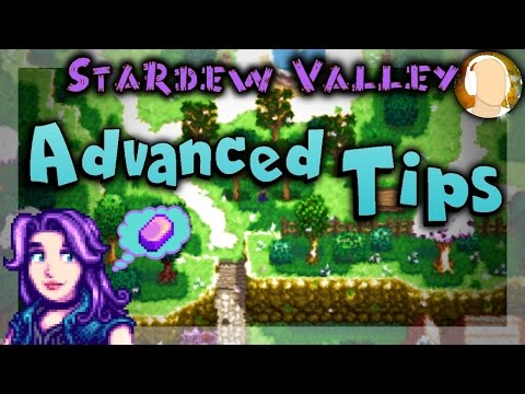 Make Stardew Valley - ADVANCED TIPS | How to Make Money and Iridium Guide Images