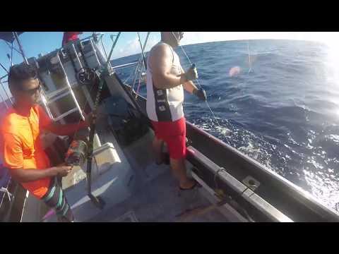 7 Ahi and 4 Otaru aboard Hawaiian Marines, Black Pearl