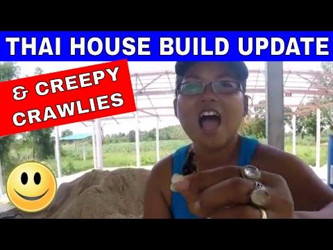 BUILDING A THAI HOUSE & THAI FARM UPDATE - Rural life Thailand Homestead THAI VLOG THAI VLOGG