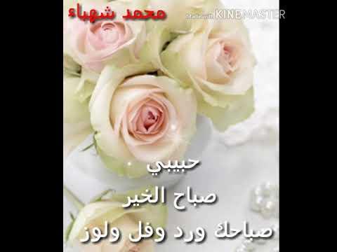 حلات وتس حبيبي صباح الخير محمد الحلبي Youtube