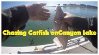 Fishing Canyon Lake Looking for Cats! #Catfish #CanyonLake #Fishing #Powerdrifting