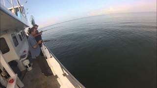 Long Island Sound porgy fishing