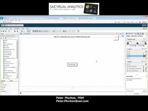 SAS Visual Analytics and Portfolio Credit Risk Analysis