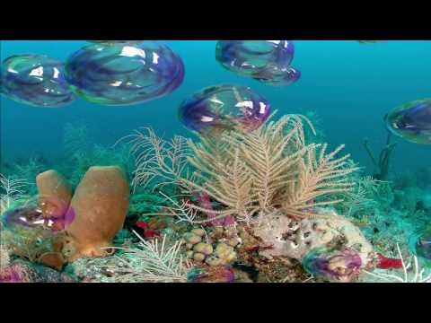 Free Bubbles 3D Screensaver for Windows HD