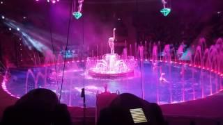 Курский цирк на воде.