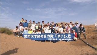 中国内モンゴルで砂漠の緑化活動を行う愛知大学の学生たち 中京テレビ「...