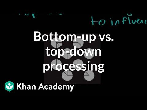 Bottom-up vs. top-down processing | Processing the Environment | MCAT | Khan Academy