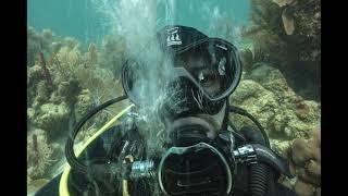 Advanced Underwater Photography Course - Mhairi Webster Showreel - Utila Dive Center