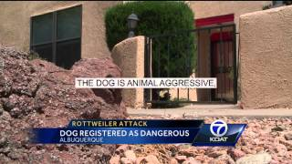 Rottweiler Attack: Dog Registered As Dangerous