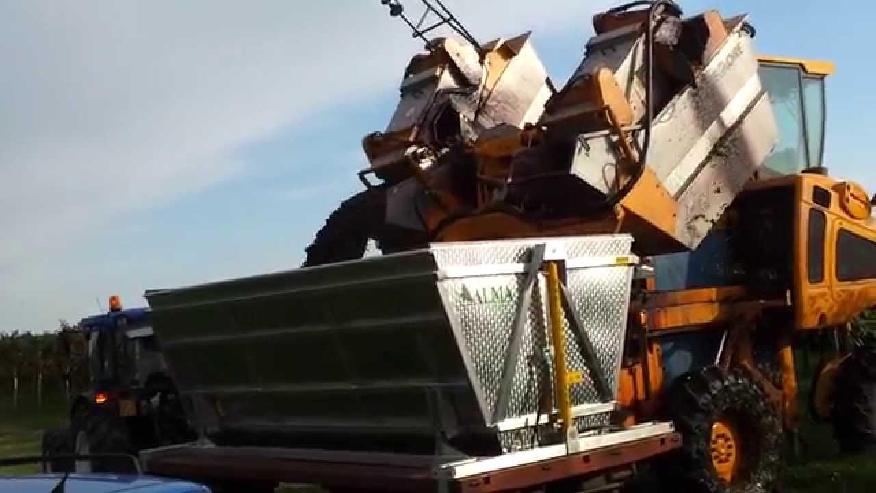 Vasca contenitrice per trasporto uva youtube for Vasca trasporto uva usata