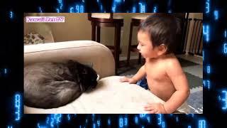赤ちゃんと動物の可愛い面白動画 https://www.youtube.com/watch?v=aK-7...