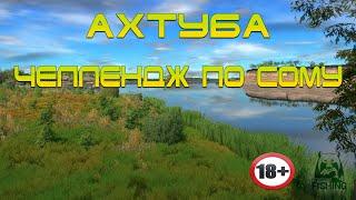 Русская Рыбалка 4 Ахтуба Челлендж Сом Часть 2