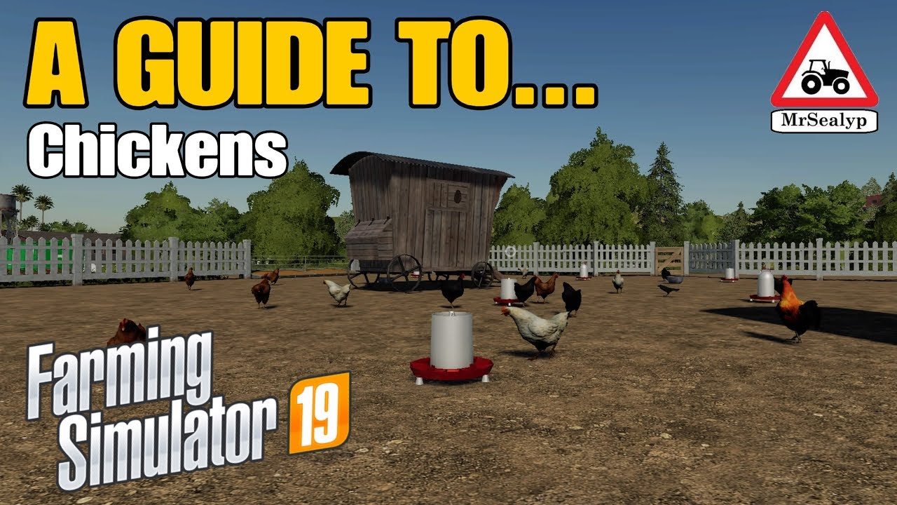 A Guide To Chickens Farming Simulator 19 Ps4 Tutorial Youtube