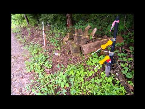 Garden Electric Fence 50m Green Polywire Garden Electric