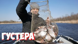 Весенняя рыбалка Фидер Рыбалка на реке Густера Плотва Река Emajõgi