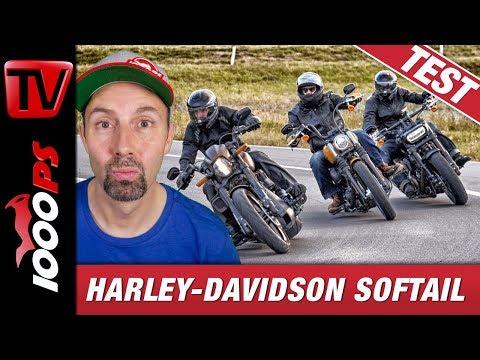 Harley Softail über Schweizer Pässe geprügelt - Test von Fat Bob 114,  FXDR 114, Street Bob