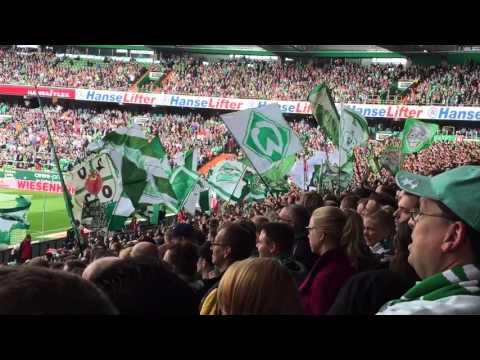 German Bundesliga Match - Bremen vs Leverkusen