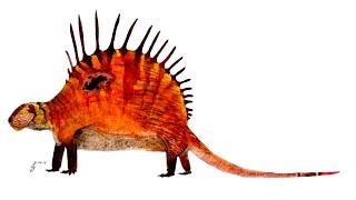 Paleo Profile - Dimetrodon