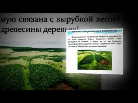 Презентация на тему Экологические проблемы