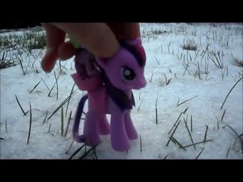 MLP Winter wrap up