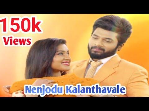 Nenjodu Kalanthavale Full Song || Sembaruthi Serial Love Song