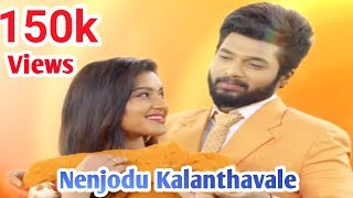 Nenjodu Kalanthavale Full Song || Sembaruthi Serial Love Song