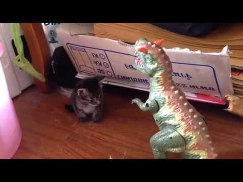 ไดโนเสาร์ ของเล่น ล่าสัตว์