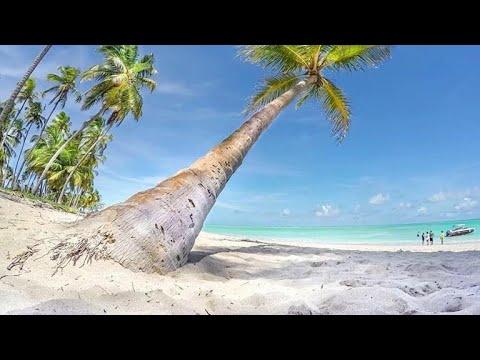 La Batería en las paradisiacas playas de Salvador de Bahía de YouTube · Duración:  12 minutos 22 segundos