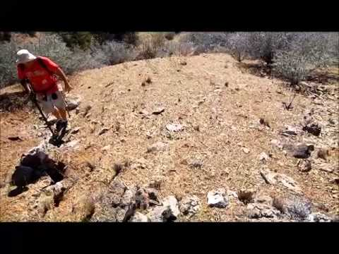 Live Nugget Finds in Northern California Metal Detecting with Alan Mash 10-4-14