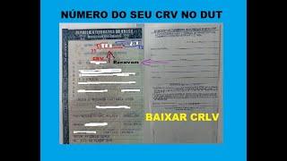 Download Como consultar CRV de um veículo e baixar CRLV no PC