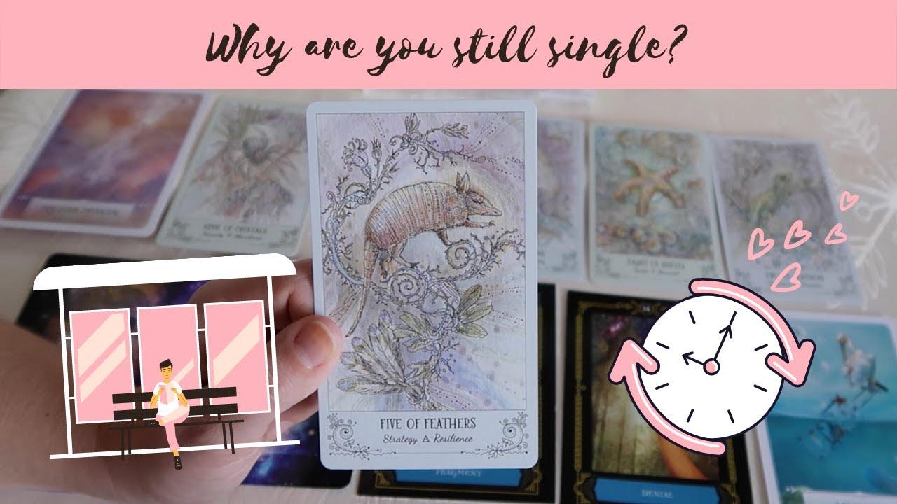 Single finden kostenlos