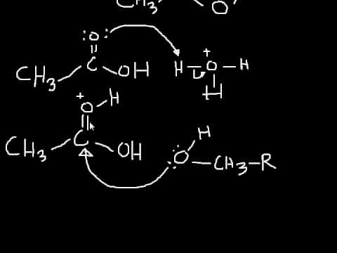 Esterification Mechanism: making an ester from a carboxylic acid and an alcohol
