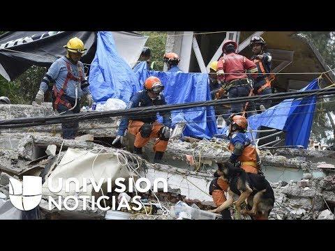 Los héroes voluntarios que, pese al peligro, prestaron su ayuda tras el terremoto en México