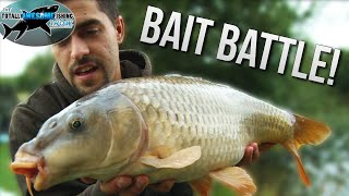 Bait Fishing Battle! Which is best? | TAFishing