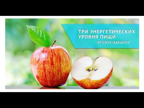 , . Толковый словарь русского языка (П-Р)