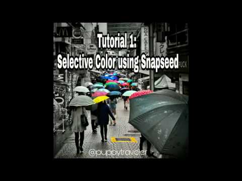 Snapseed Tutorial: Isolating Color/Selective Color/Color Splash