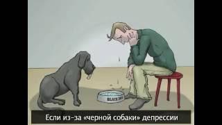Как победить «черную собаку» депрессии?