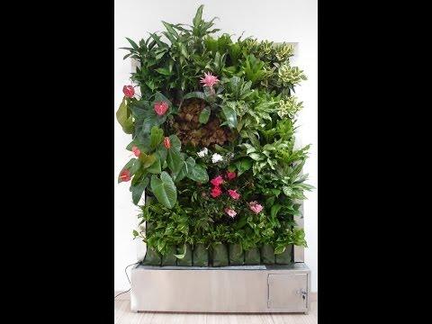 Crear y decorar un cuadro y jard n vertical con plantas for Cuadro jardin vertical