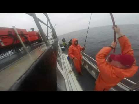 Capt Dave III, Sheepshead Bay 5-8-14 Cod Fishing-GoPro Hero 3+ Black