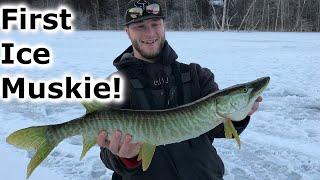 SURPRISE MUSKIE While Panfish Fishing Late ice