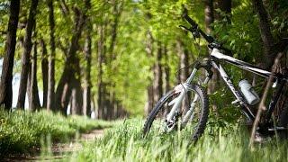 Велоотдых