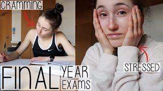 Baixar 5 EXAMS IN 5 DAYS | MY FINAL YEAR EXAM SEASON DIARY 2019